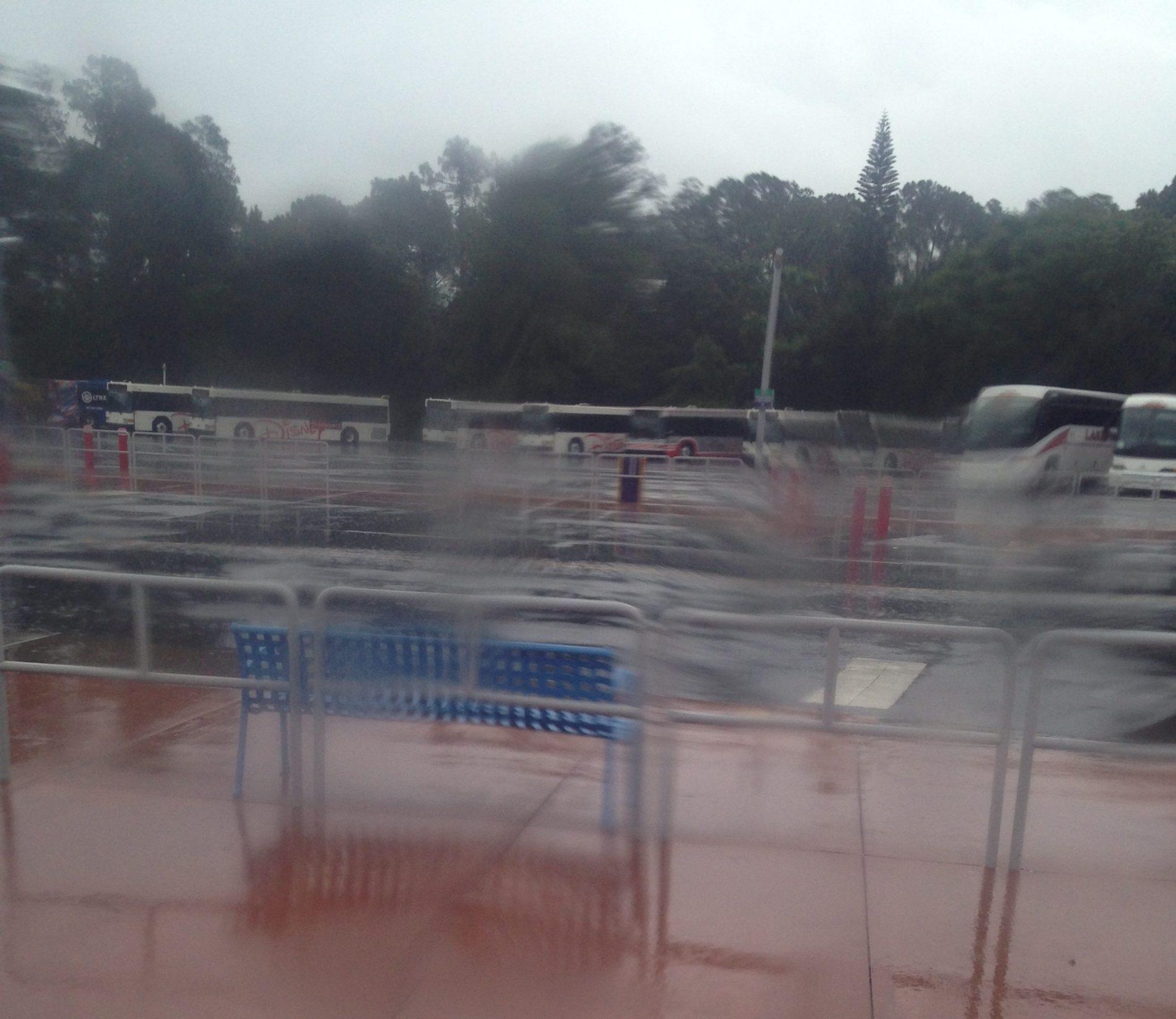 epcot-rain