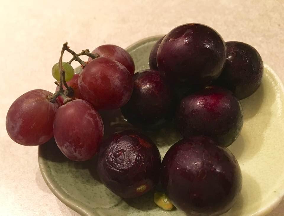 muscadine-grape-compare